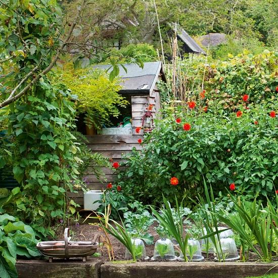9 Cottage Style Garden Ideas: In En Om Die Huis: Planne Teen Goggas In Jou Groentetuin