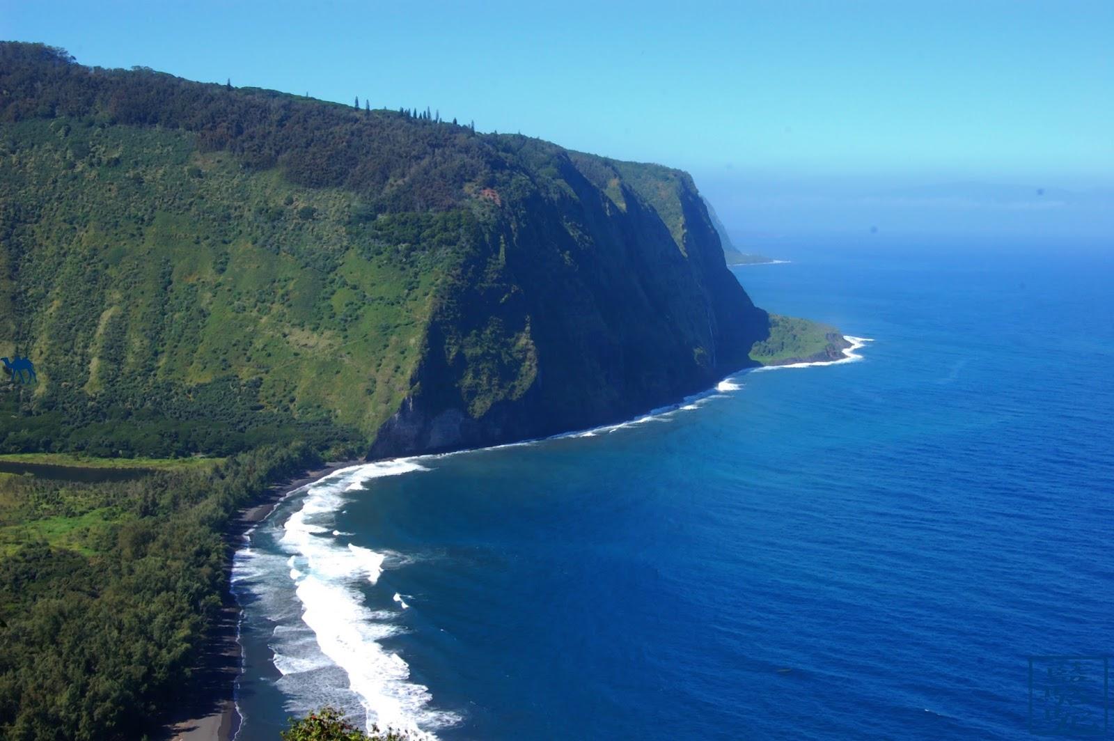 Le Chameau Bleu - Instantanés d'Hawaii