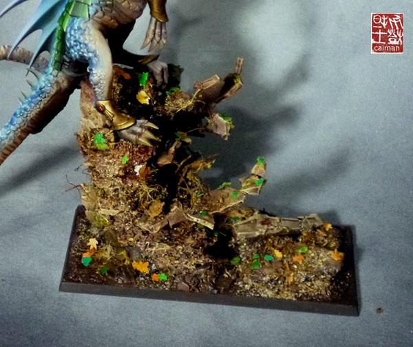 [Vente] Armée scyrah et hauts elfes P1100159