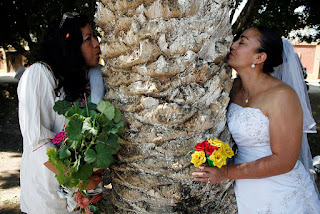 Γυναίκες στο Μεξικό παντρεύονται δέντρα για να τα σώσουν