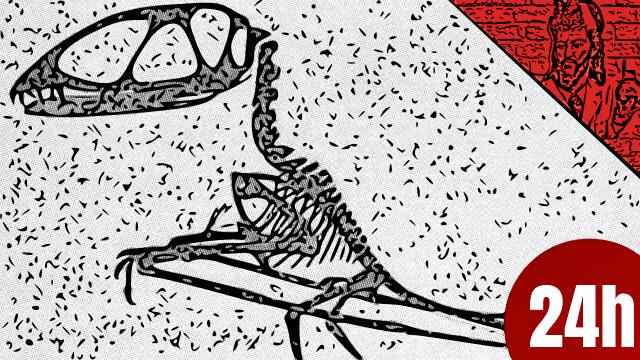 Fissuras em dentes revelam pistas sobre dieta de Pterossauros - QN NEWS 24h