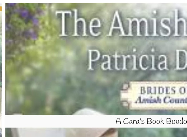 The Amish Nanny by Patricia Davids Review