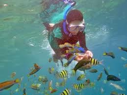 liburan pulau pari