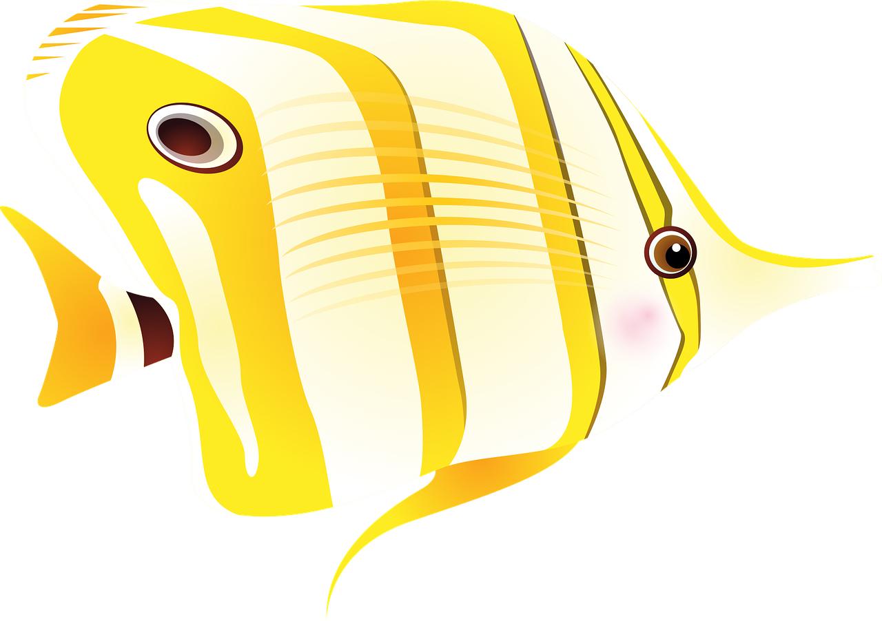 Ryba bez wody, czyli 10 przyczyn strachu przed wystąpieniami publicznymi