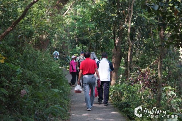 【彰化田中旅遊景點】田中森林公園登山步道-森林芬多精健行路線-幼幼班路線