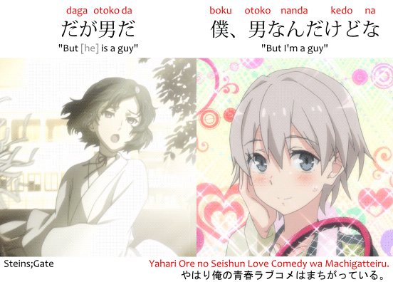 "Phrase daga otoko da だが男だ, ""but he is a guy"" from Steins;Gate used about Ruka Urushibara and boku, otoko nanda kedo na 僕、男なんだけどな, ""but I'm a guy,"" used by Saika Totsuka from Yahari Ore no Seishun Love Comedy wa Machigatteiru. やはり俺の青春ラブコメはまちがっている。"