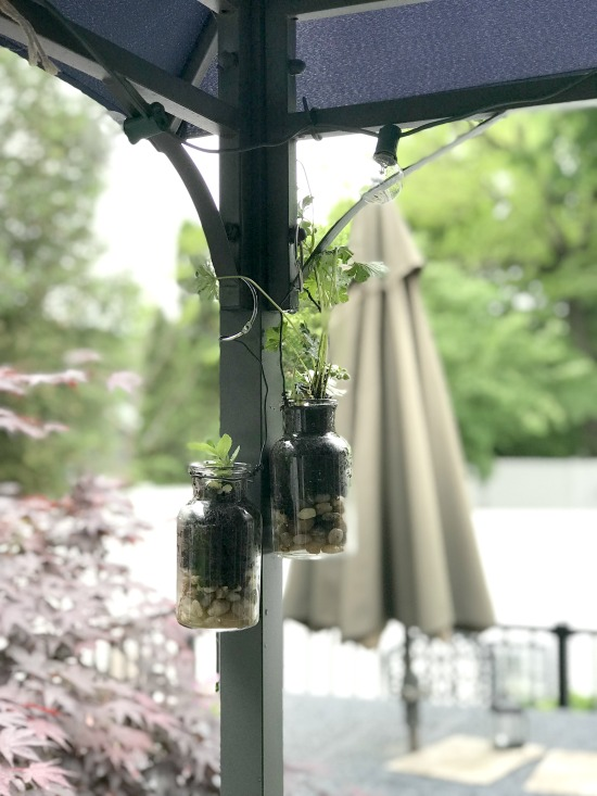 DIY Hanging terrarium planters for the patio
