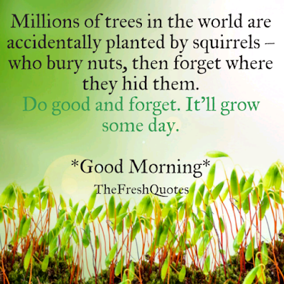 good morning images: Millions of trees in the world are accidentally planted by squirrels who bury nuts, then forget where they hid them. Do well and forget. It'll grow someday.
