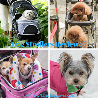 dog strollers, Review This, Pet Accessories, help for elder pets