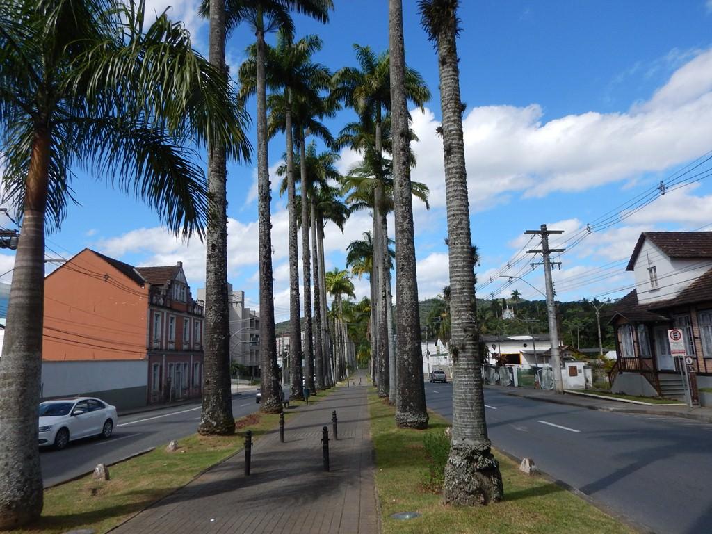 Rua das Palmeiras ou Alameda Duque de Caxias em Blumenau