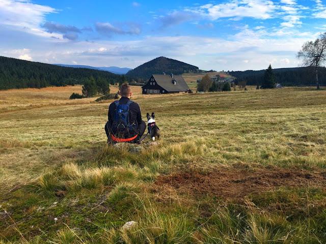 wakacje z psem, w góry z psem, podróże z psem, Jizerka, Izerka
