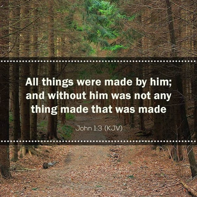 All things were made by Jesus