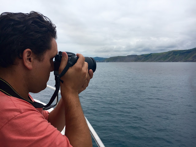 ruta-barco-flysch-zumaia