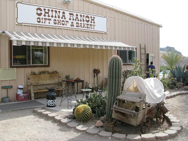 Toko Souvenir Kebun Kurma China Ranch