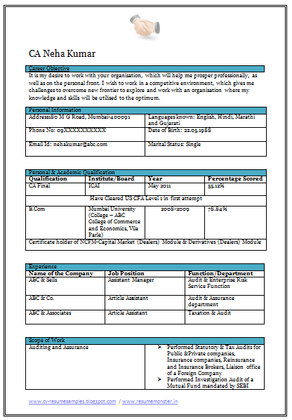 Curriculum Vitae Format For Chartered Accountant Sample