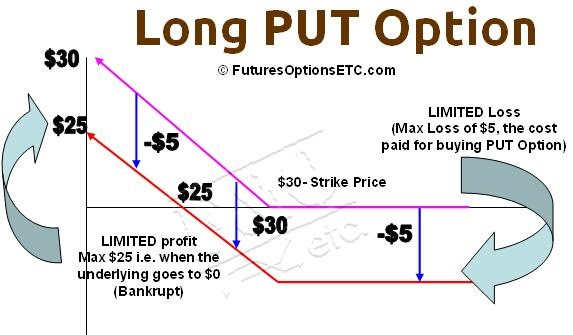 Selling Put Options: Tutorial + Examples