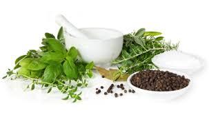 Obat Salep Alami Untuk Penyakit Gatal Eksim