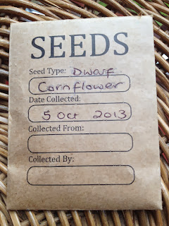 How to Save Cornflower seeds