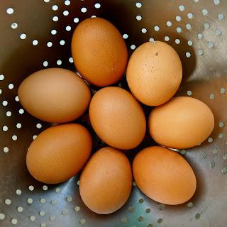 Garam Masala Deviled Eggs, garam masala, eggs, easter, recipe, easy, indian, deviled, spicy, worcestershire, hard boiled, hard cooked, vegetarian,