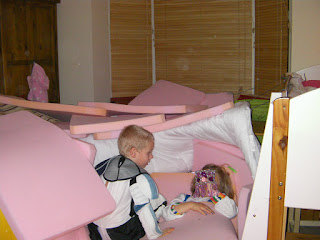 pink packaging foam makes a good den