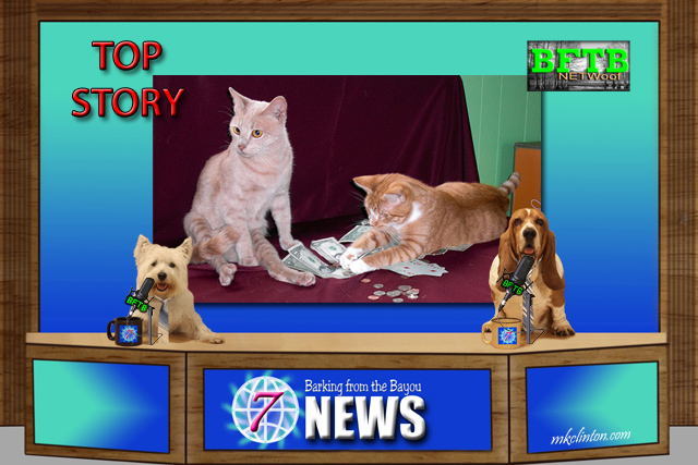BFTB NETWoof News reports on two cats inheriting $300k