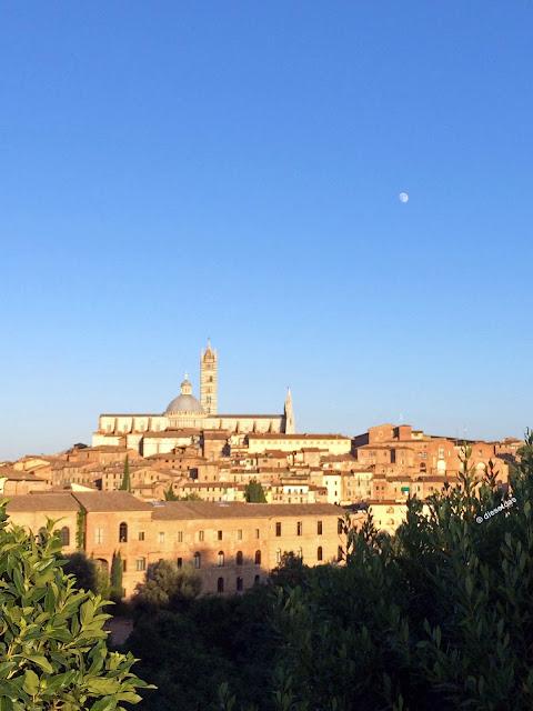 Blick auf den Dom von Siena - Duomo di Siena