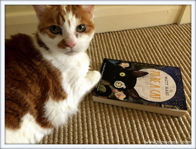 Amber's Book Reviews To Be A Cat by Matt Haig @BionicBasil® Feline Fiction on Fridays
