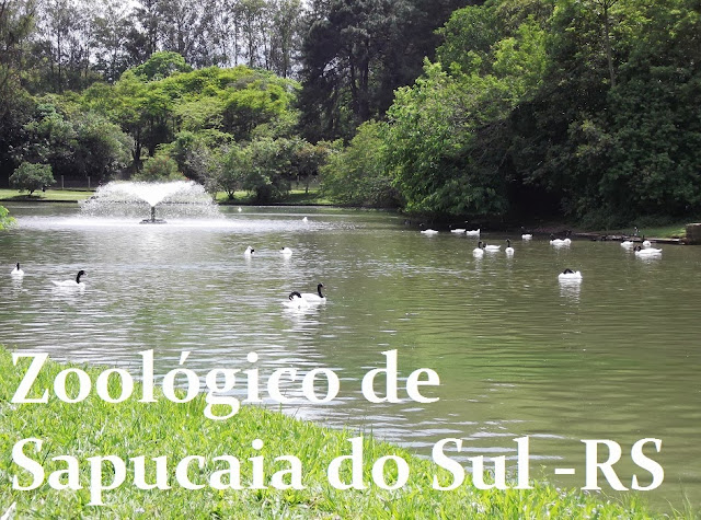 zoologico de sapucaia do sul rs