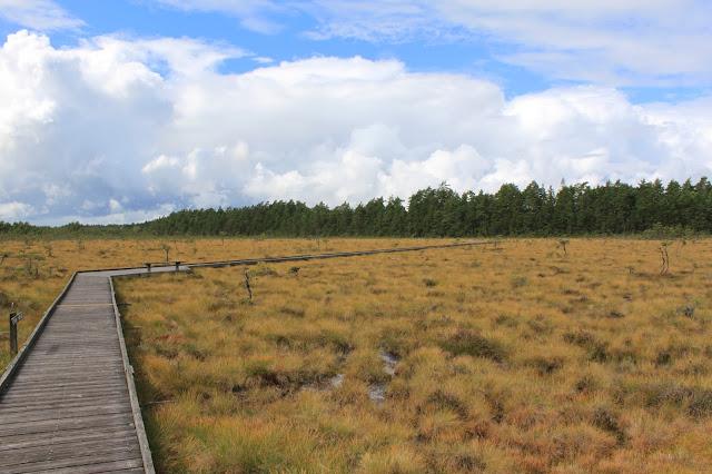 Nationalpark Store Mosse - rollstuhlgerechter Wanderweg