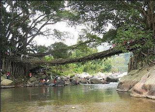 Jembatan Akar, Sumatra, Indonesia