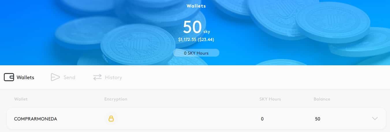 Wallet Monedero de Skycoin (SKY) Tutorial Compra y Configuración Actualizado en Español