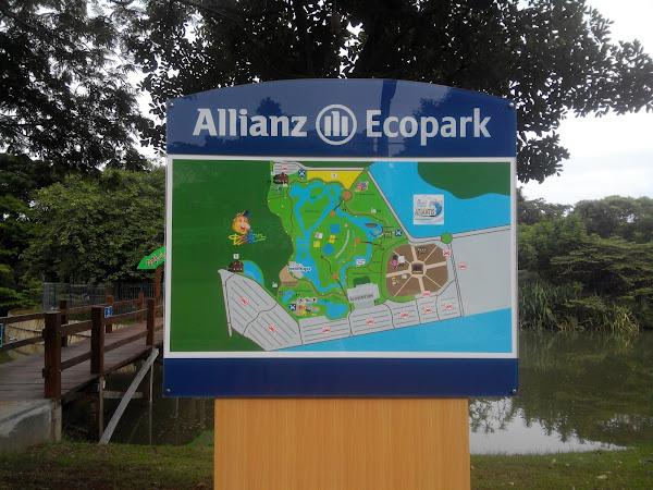Mengejar Sehat di Allianz Ecopark Ancol Melalui #AllianzSweatChallenge