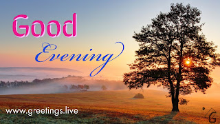 Good evening Best greetings on evening Time