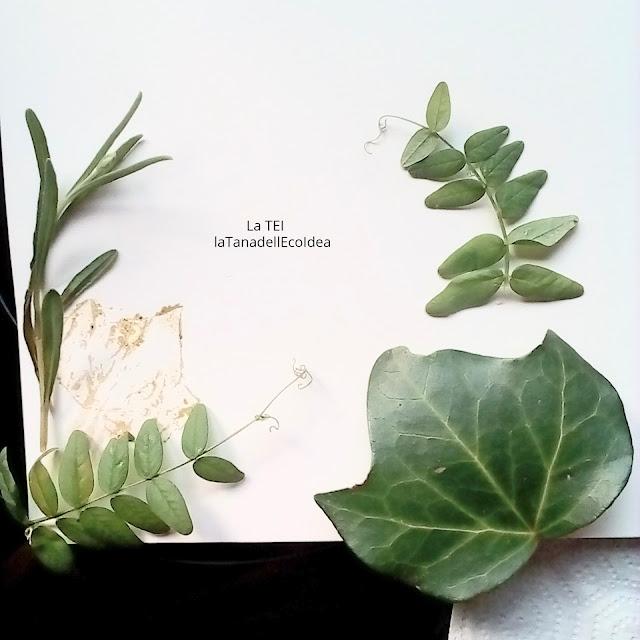 Stampa eco con foglie