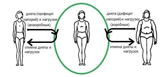 корректировка веса тела