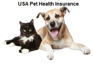 Compare Pet Health Insurance in the USA