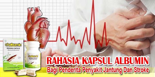 Rahasia Kapsul Albumin Bagi Penderita Penyakit Jantung Dan Stroke