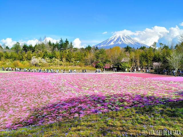 Japó 2019: Organització i cost del viatge