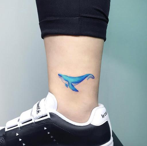 Esse azul cor-de-baleia