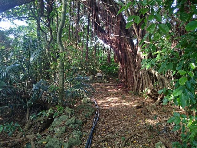小波蔵集落内にある拝所の写真