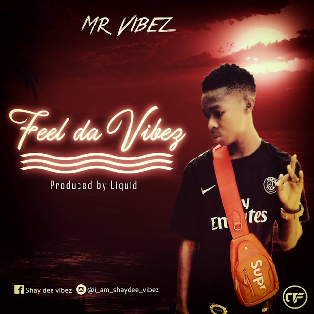 Mr Vibez — Feel Da Vibez (prod by liquidmix) - www.mp3made.com.ng