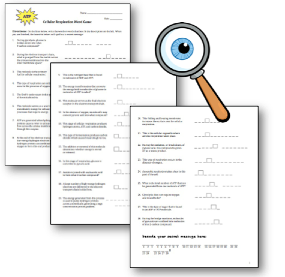 Perpendicular And Parallel Lines Worksheet Pdf Amy Brown Science Another Freebie Cellular Respiration Word Game  Superteacher Worksheets Login with Fact Vs Opinion Worksheet Word Click  Adding Fractions With Like Denominators Word Problems Worksheets