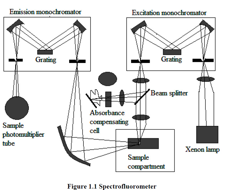 draw an optical diagram of spectrofluorometer  give its