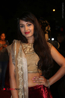 Actress Vennela Stills in Lehenga Choli at Gemini TV Puraskaralu 2016 Event  0044.JPG