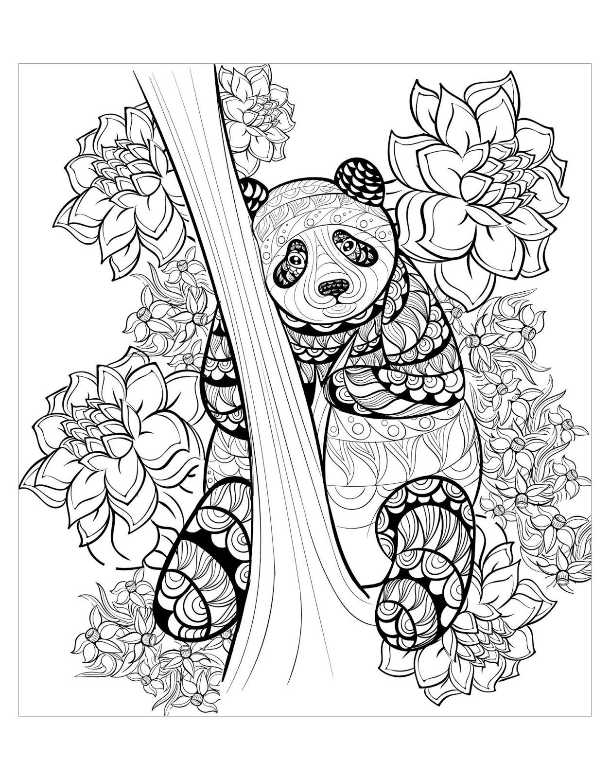 Tranh tô màu con gấu trúc và hoa