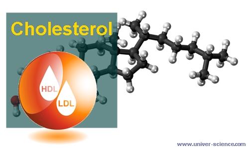 Kadar kolesterol pada perempuan dan amak-anak