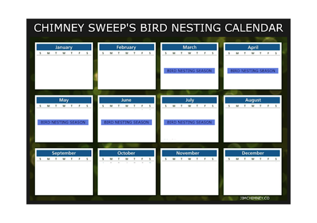 Bournemouth Chimney Sweep's Bird Nest Calendar 01