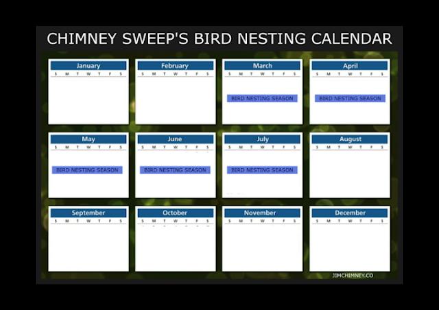 Bournemouth Chimney Sweep's Bird Nest Calendar 01