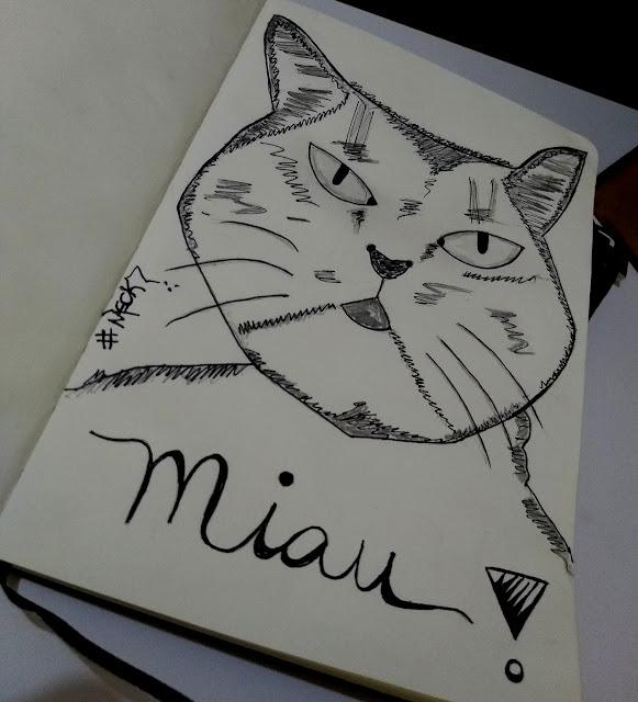 Desenhando minha gata