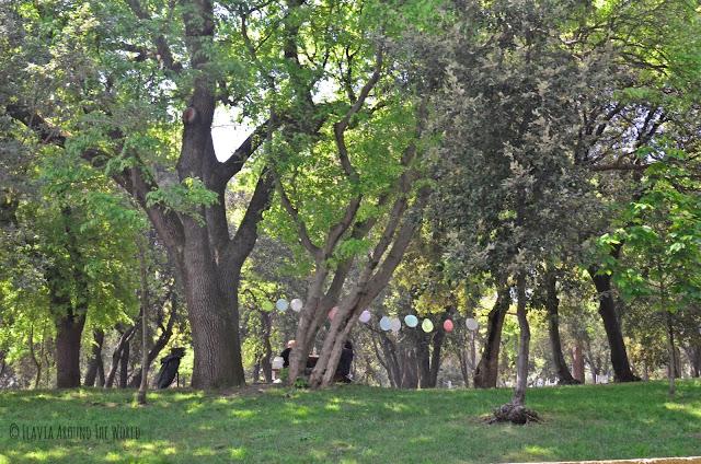 Celebración en el parque Yıldız